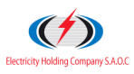 Electricity Holding Company